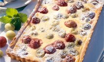 stachelbeer pudding tarte